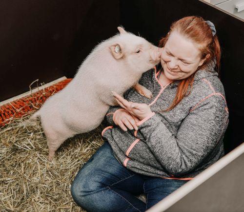 Schweinchen Anneliese und Nadine, die größte Liebe, die es jüngst gab