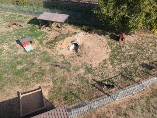 Hügelwiese, aus der Aktion ein Meter Freiheit wurde dieser grossse Auslaufbereich