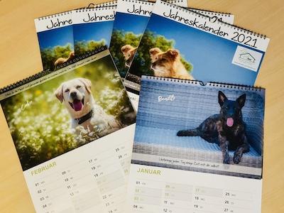 Tierheimkalender 2021