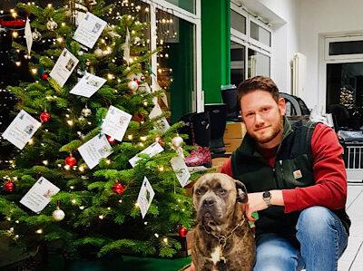 Wunschbäume erfüllen Weihnachtswünsche
