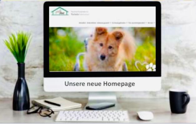 Neue Website – Es ist soweit!